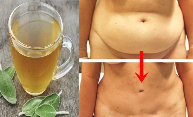 El chupa abdomen, excelente receta antes de dormir